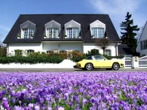 villa-340451_1280